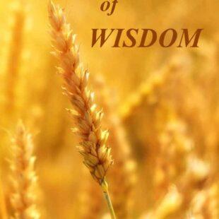 Grains of Wisdom